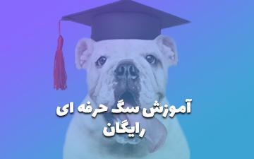 آموزش سگ - تربیت سگ مبتدی تا پیشرفته [❤️رایگان]